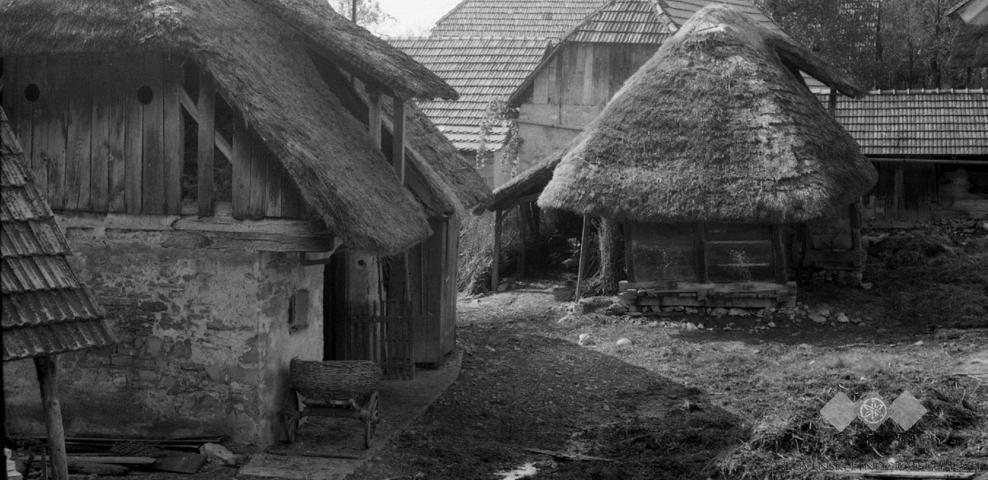 Hiše v Drašičih iz leta 1965