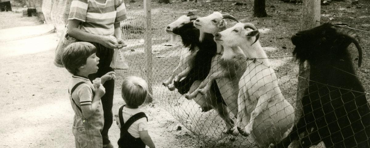 Mojca v živalskem vrtu